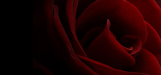 February 2011 Mix – Valentines Day Special